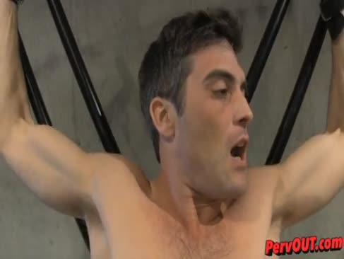 Porn gastimaza